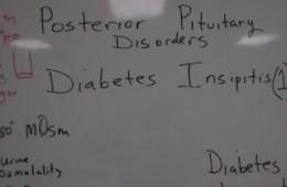 Diabetes Insipidus Statistics